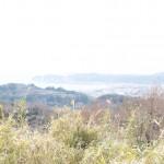 Hiking the hidden path in Kamakura! – Kinubariyama hiking course