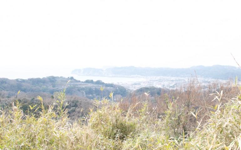 kamakura,kumamoto,hiking,path,nature