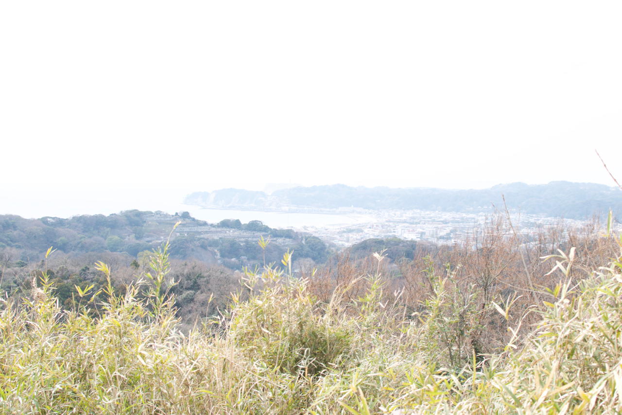 Hiking the hidden path in Kamakura! – Kinubariyama hiking course