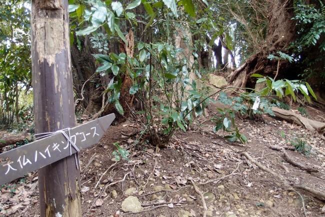 Lost? Coming through nature with informative signposts, Daibutsu hiking trail, Kamakura