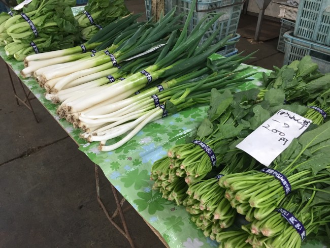 More green vegetables at Kamakura Farmers Market