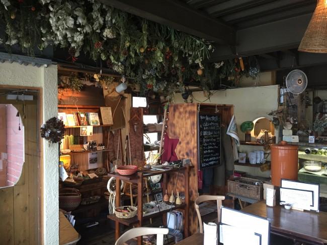 A vine-sprawl design over Magokoro cafe interior walls, Kamakura