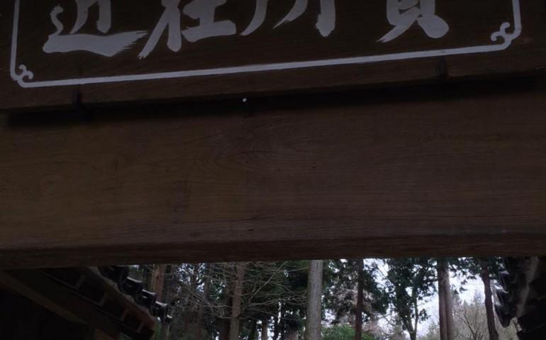 temple,walk,hiking,nature,kamakura,zen,buddhism