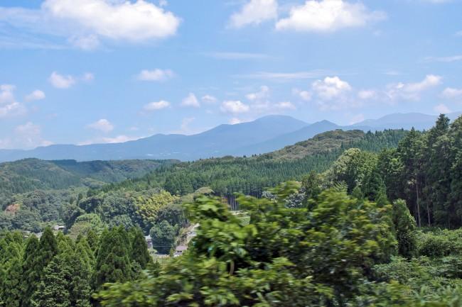 Mountain full of trees on the way to Kirishima Jingu Shrine.