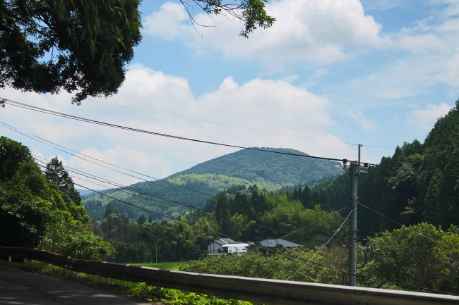 Mountain full of trees and a house on the way to Kirishima Jingu Shrine.