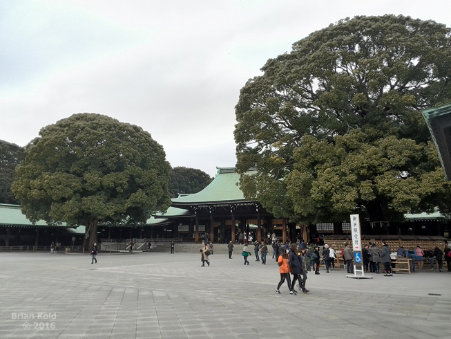 Meiji Shrine, A brief look into Japan's most renown Shrine