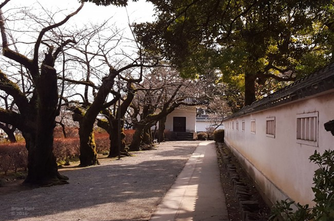 surrounding of Odawara Castle and architecture in Japan