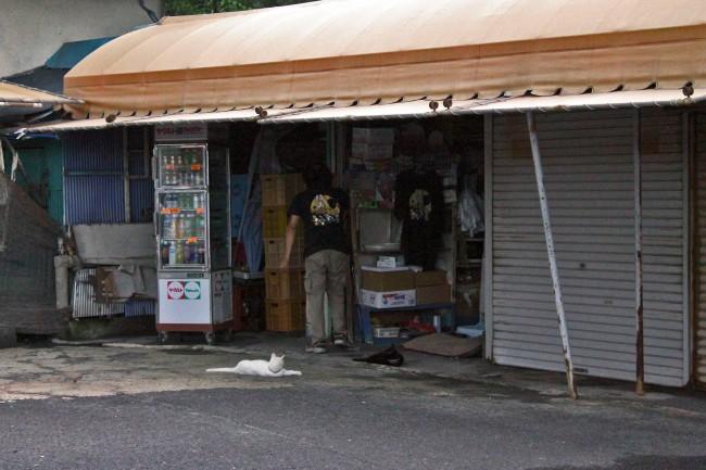 A shop on the island of Sakurajima.