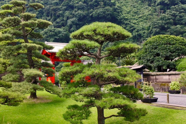 Sengan-en garden landscape of trees before a red gate in Kagoshima.