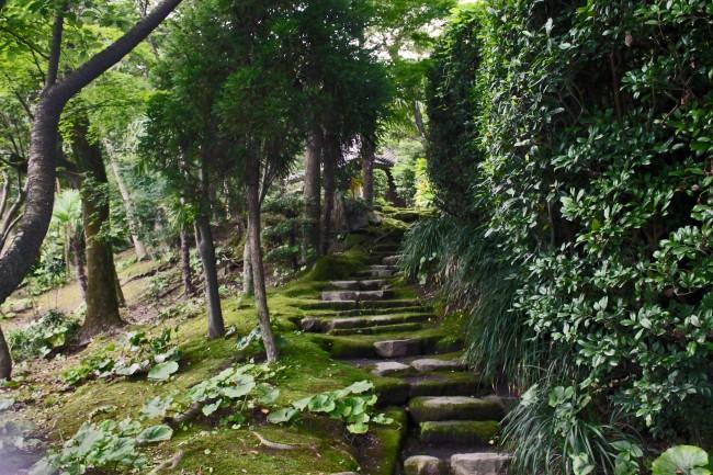 Kagoshima Sengan-en garden with a stone staircase.