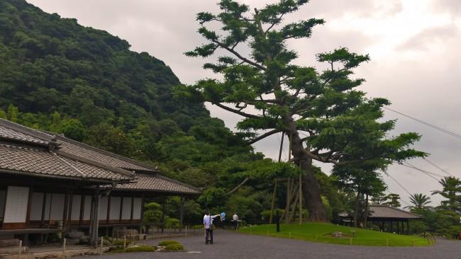 Sengan-en in Kagoshima near a garden with a lot of nature.