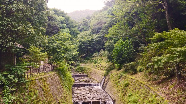 Kagoshima Sengan-en water stream between raw nature and the garden area.