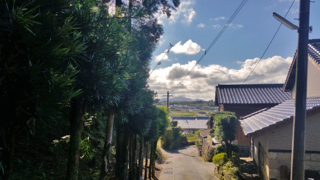 Tano Kansa - road with trees on the left and houses on the right.
