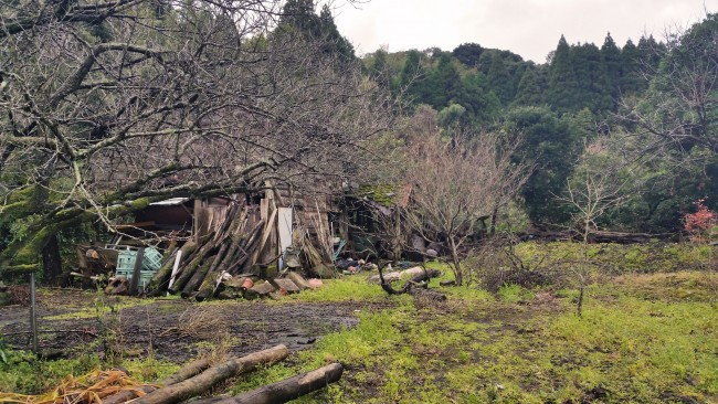 Tano Kansa - abondoned house with a lot of of wood and some trees.