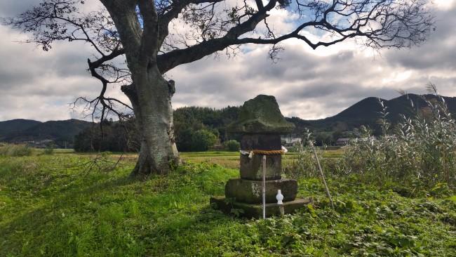 Tano Kansa - another Tano Kansa statue near a tree and a grass plain.