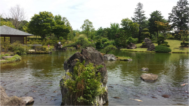 a garden with the great Buddha statue in Ibaraki Japan