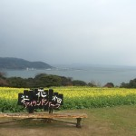 Nokonoshima, a beautiful floating island!!