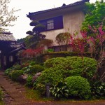 Midoriso Onsen, the best hot spring Kagoshima has to offer?