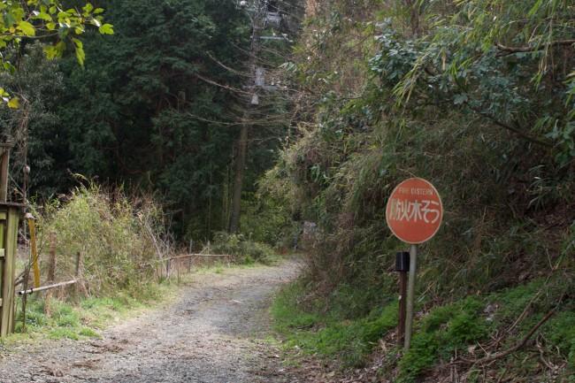 Hiking path in Kamakura