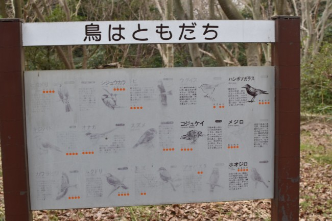 signboard introducing birds of Kamakura