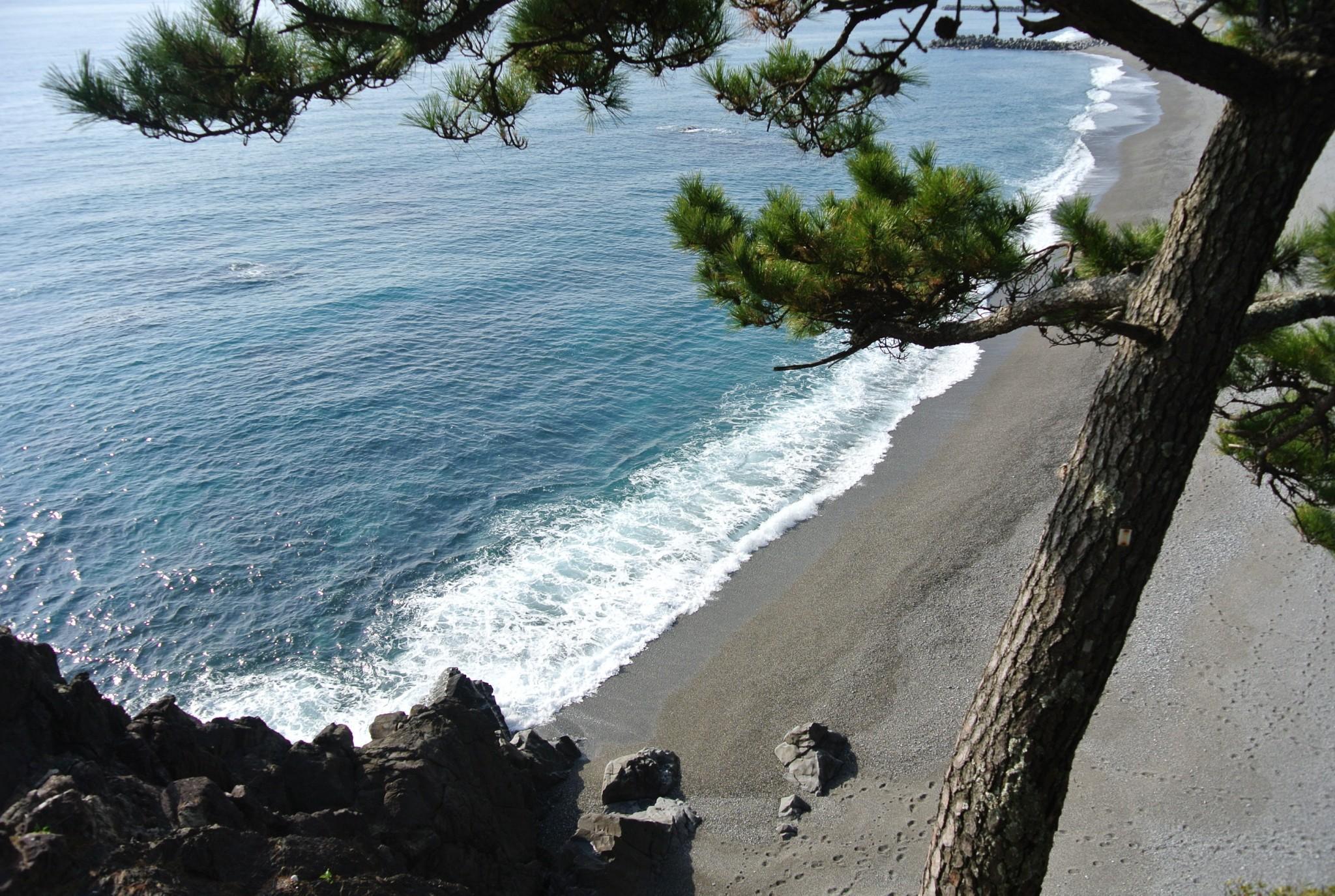Katsurahama Beach in Kochi, not your usual seaside stop!