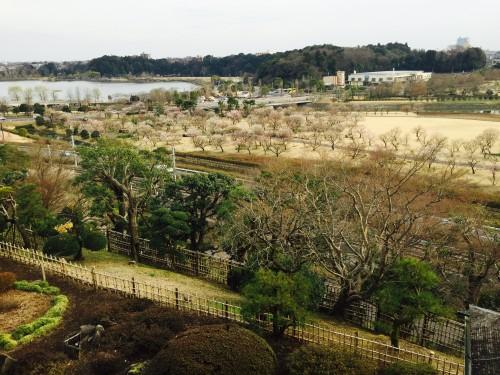The plum blossoms alongside Senba Lake as seen from Kairakuen Garden outlook spot Kobuntei house, Ibaraki prefecture