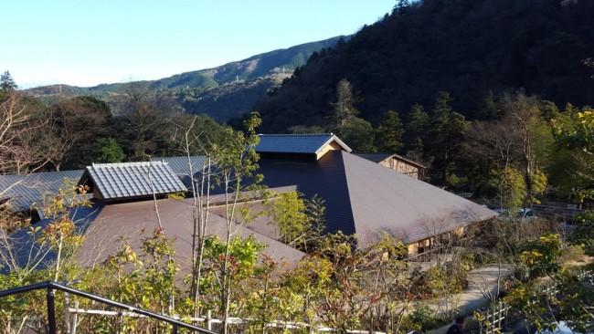 Hakone Yuryo onsen hot springs among Hakone forests