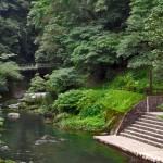 Foot Onsen Relaxation in Kirishima!