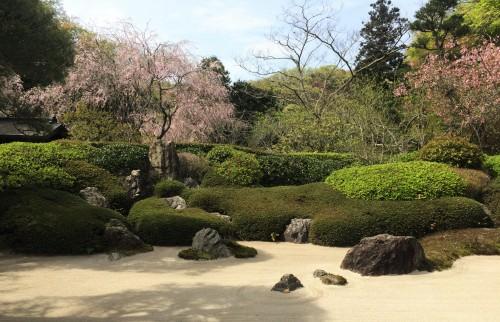 dry garden in temple, Kamakura