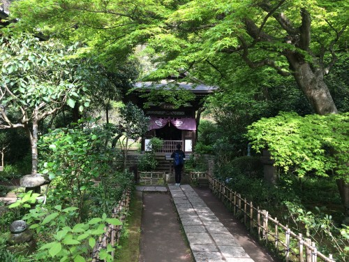 Engaku-ji temple, Kamakura
