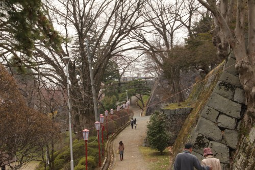 Morioka Castle with some chery blossom trees over the Morioka Castle walls.