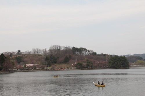 Lake near Morioka Castle with cherry blossom trees on the opposite shore.