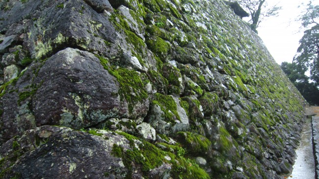Stonework of Kochi Castle that is worn due to its long history.