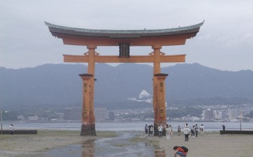 Miyajima,Deer,Torii,Gate,Shinto,Shrine,Island