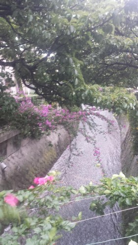 canal in Numazu city, Shizuoka offers a getaway from the city offering beach and castle experiences