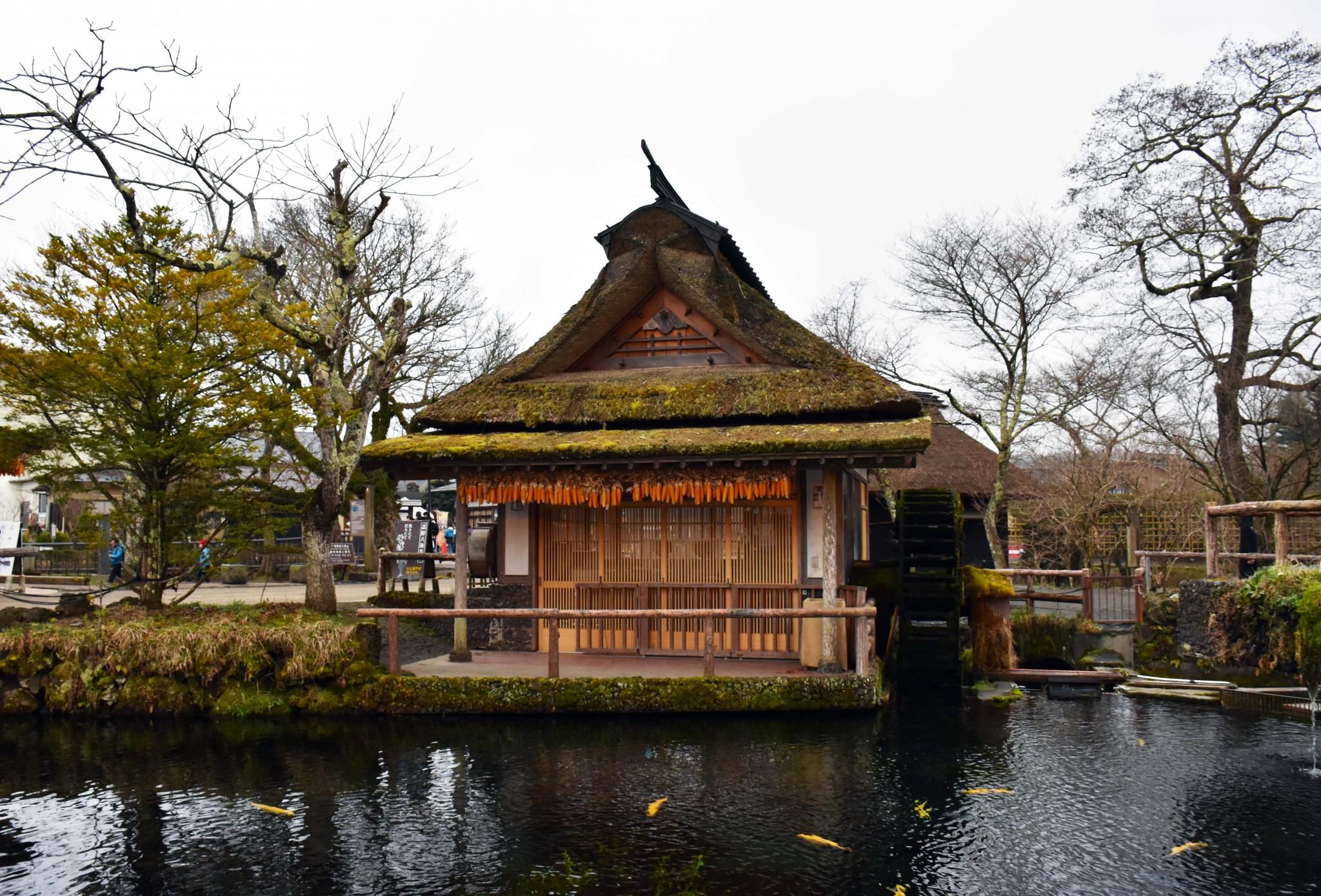 Five Lakes of Yamanashi: A sightseeing tour