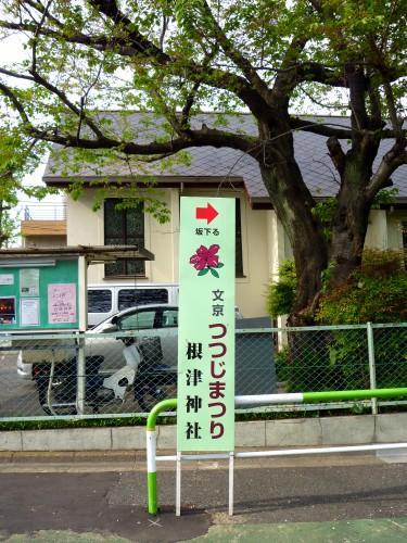 Signpost marking Nezu Shrine Azalea Festival, fine azalea garden throughout Tokyo