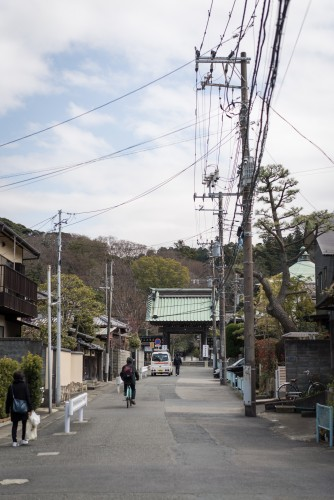 Road to Myhohonji Temple with its history.