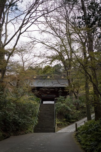 Staircase up to Myohonji Temple and its history.