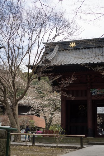 Myohonji Temple gate and more of its history.