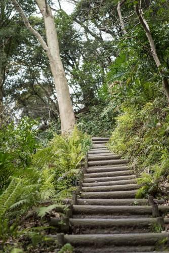 Stair case at Gionyama hiking trail in Kamakura.