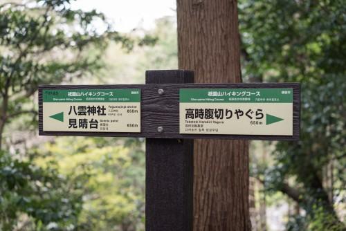 hiking, nature, climbing, Kamakura, Kanagawa, Mount Fuji, Mt. Fuji, mountain