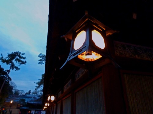 Wooden Lanterns Hanging from one of the buildings at Yakasa Shrine, Kyoto