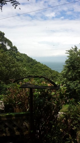 scenic shot of green mountains and ocean