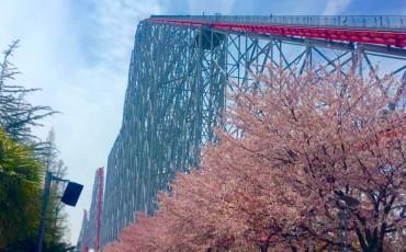 Steel Dragon, Nagashima Spa Land, roller coaster, Mie, Ise, Kuwana