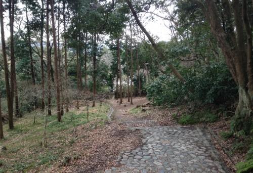 Downwards hiking along Genjiyama Park pathway, unlike Kewaizaka Pass, Kamakura
