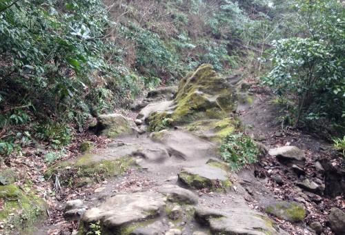 A little rough hiking patch along Kewaizaka Pass before Genjiyama Park, Kamakura