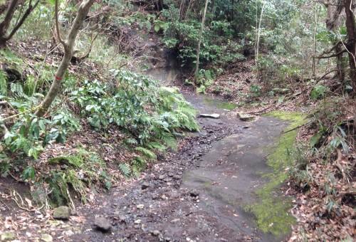 A little hiking before Genjiyama Park through Kewaizaka Pass, Kamakura