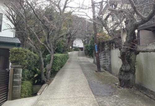 More walking, closer towards a temple or two by Kamegayatsuzaka Pass, Kamakura