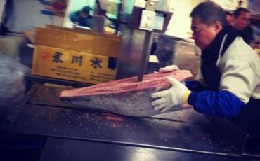 Tuna auction at Tsukiji fish market